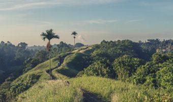 Ziele 2016: In Balance kommen und nach Bali